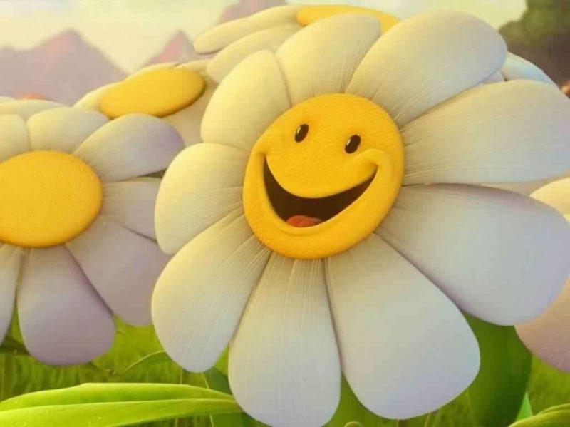 أفكار لليوم العالمي للسعادة.. إليك قائمة بأفكار بسيطة للاحتفال باليوم العالمي للسعادة