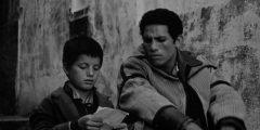احداث فيلم معركة الجزائر ما أهم الأحداث التي جرت في معركة الجزائر