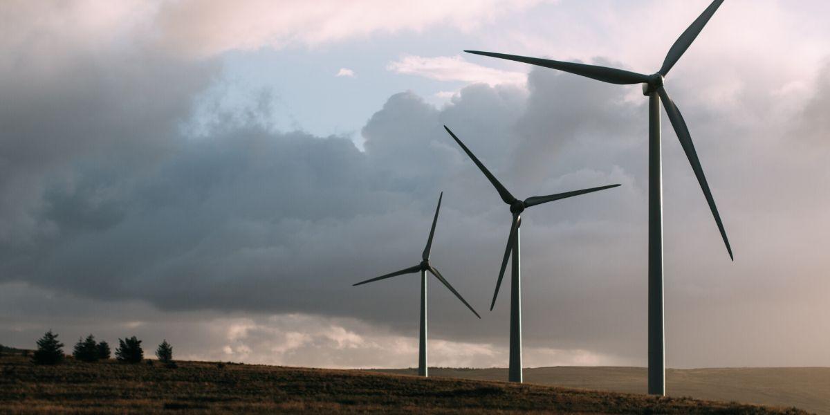 استخدام طاقة الرياح في توليد الكهرباء من الألف الى الياء