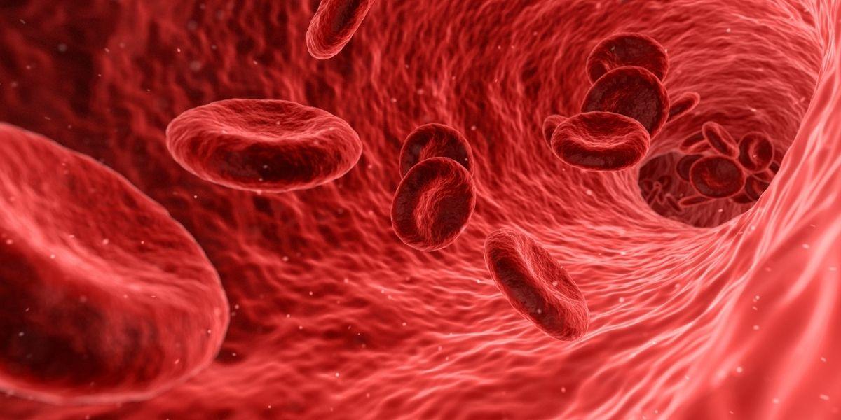 الإسبرين و سيولة الدم