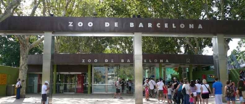 الاماكن السياحيه في برشلونة للاطفال .. متعة لك و لأطفالك