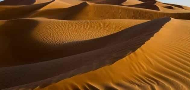 حقائق عن الربع الخالي … ومناخها والحياة الفطرية بها