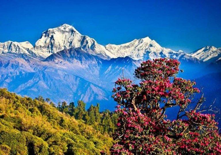 السياحة في نيبال 2019… تعرف على أشهر الأماكن والأنشطة السياحية في نيبال 2019 /  بحر المعرفة