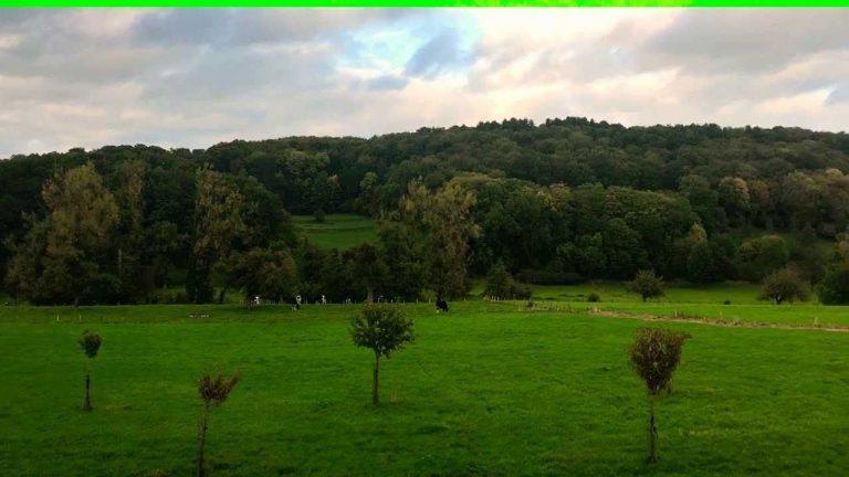 الطبيعة في بلجيكا – تعرف على الطبيعة الخلابة في بلجيكا من غابات وحدائق ومحميات