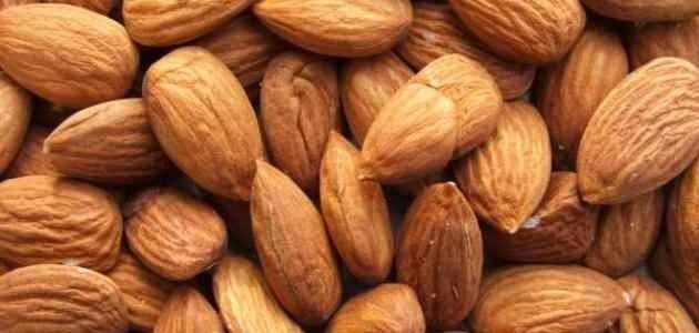 فوائد اللوز – فوائد زيت اللوز الحلو والمر للبشرة والشعر