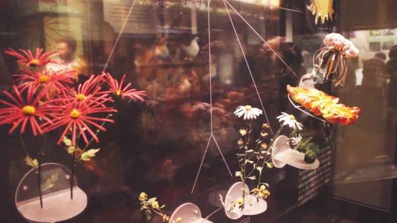متاحفطوكيو اليابان – و أجمل 10 متاحف