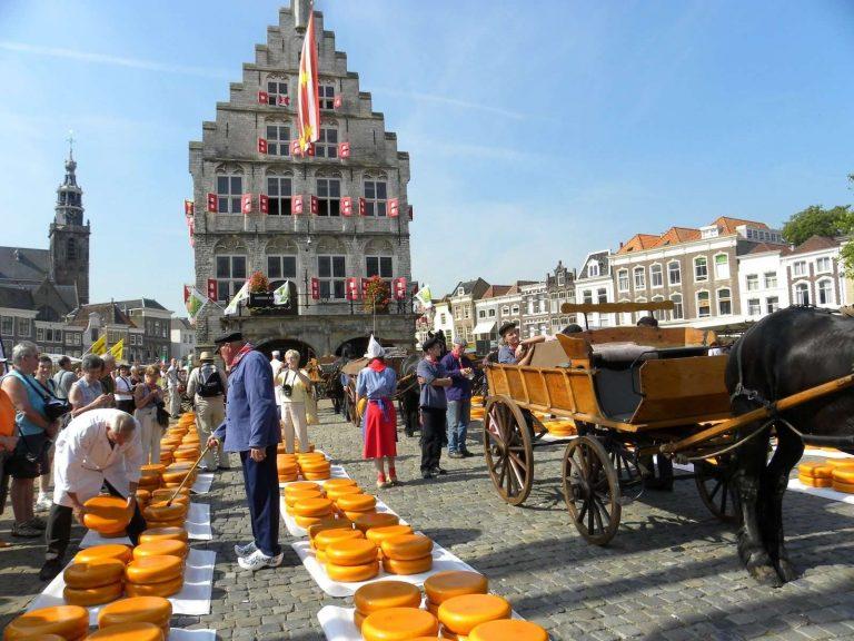 المسافات بين مدن هولندا… تعرف علي النطاق الجغرافي لمدن هولندا