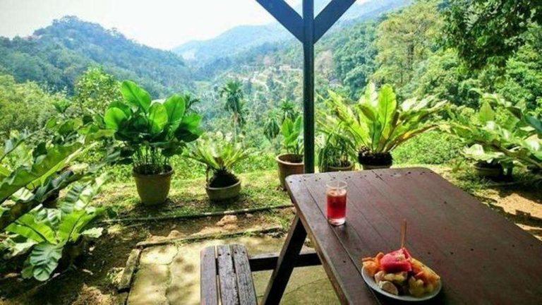 حديقة الفواكه في كوالالمبور .. تعرف على معلومات عن حديقة الفواكه في كوالالمبور ماليزيا