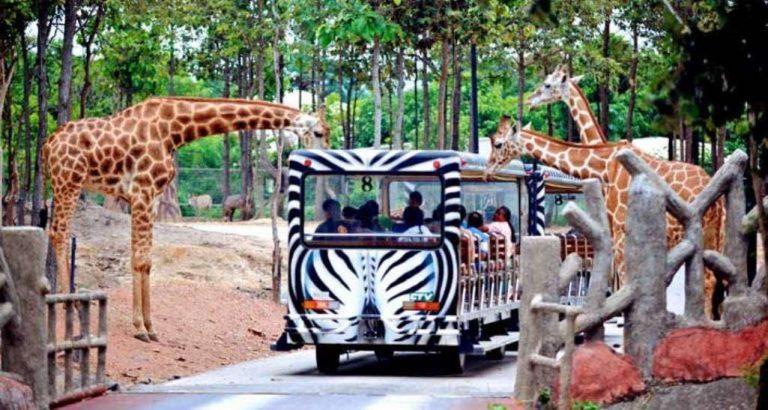 حديقة حيوانات سفاري ماليزيا.. إليك قائمة بحدائق السفاري في ماليزيا /  بحر المعرفة