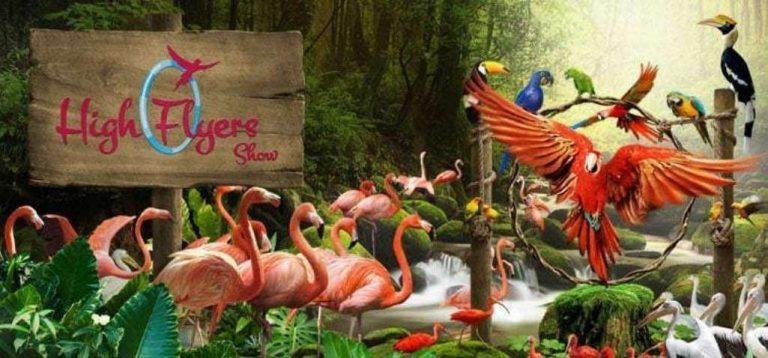 حديقة طيور كوالالمبور.. تعرف على كل ما يخص حديقة طيور كوالالمبور /  بحر المعرفة