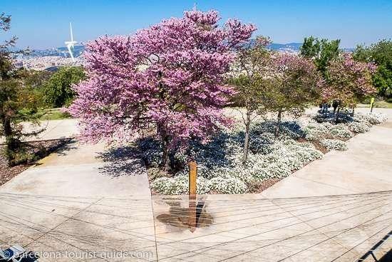 حديقة نباتات برشلونة وجمال حديقة نباتات برشلونه