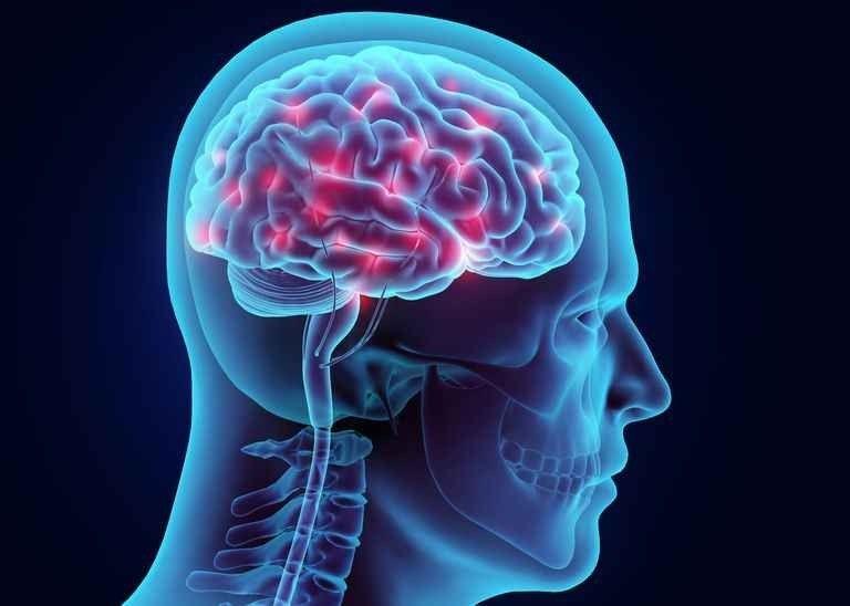 حقائق عن الدماغ .. إليك مجموعة معلومات مثيرة عن الدماغ البشرى