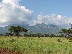 معلومات عن دولة أوغندا وما تشتهر به من فواكه ومزروعات وصناعات