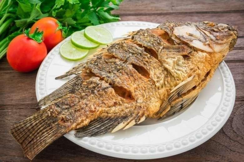 طريقة حفظ السمك المقلي .. تعرف على كيفية تخزين السمك المقلي لتناوله في اليوم التالي