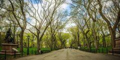 حدائق في مدينة نيويورك