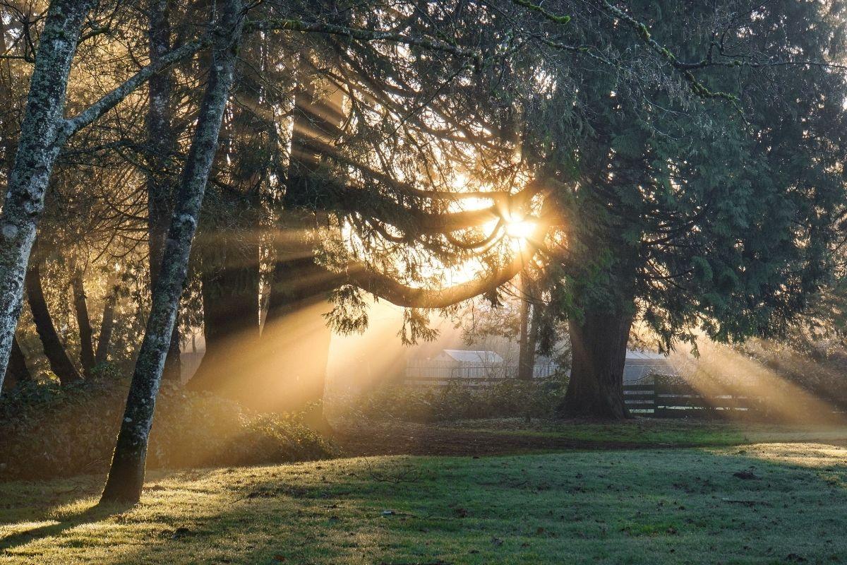 صباح الخيرات : اجمل واحلى صور عبارات صباح الخير