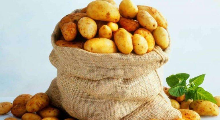 طريقة حفظ البطاطس.. تعرف على الطرق الصحيحة لتخزين وحفظ البطاطس /  بحر المعرفة