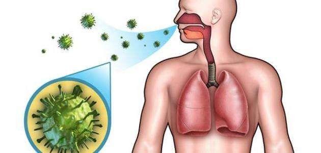 عمل الجهاز التنفسي ..  –