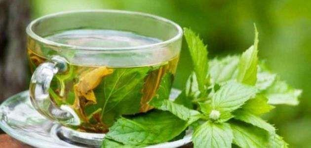 فوائد الشاي الاخضر المغربي .. الشاى الأخضر المغربى وفوائده ……..