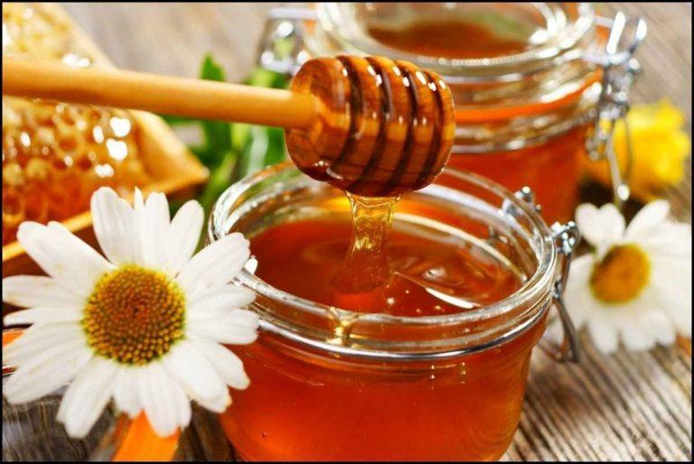 فوائد العسل الأبيض … إليك مجموعة فوائد مذهلة عن العسل الأبيض وأهميته للجسم