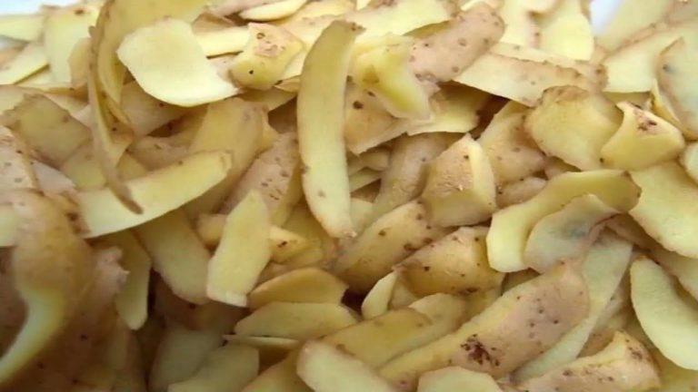فوائد قشر البطاطس .. مفيد للعناية بالبشرة ويقي من السرطان ومفيد لضغط الدم –