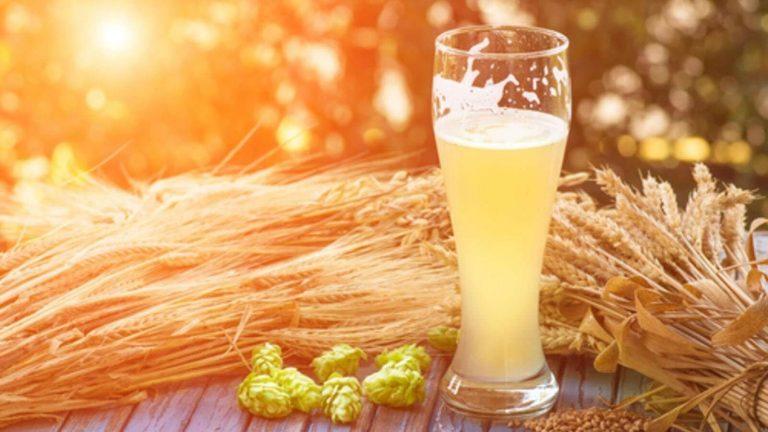 فوائد شراب الشعير… 9 فوائد لمشروب الشعير وكيفية تعرف عليها