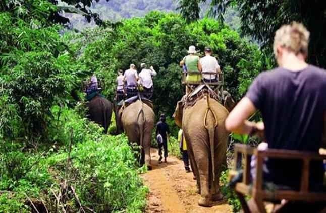 السياحة في الغابون..تعرف على أجمل الأماكن السياحية التى تمتاز بها الغابون..