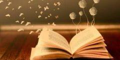 كلام عن الكتب