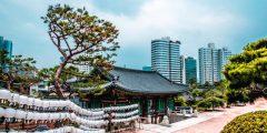 عاصمة كوريا الجنوبية