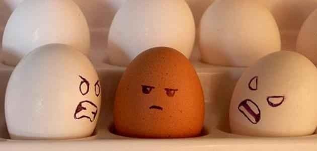 كيفية التعامل مع الناس التي تكرهني – طرق وأساليب التعامل مع من يكرهك