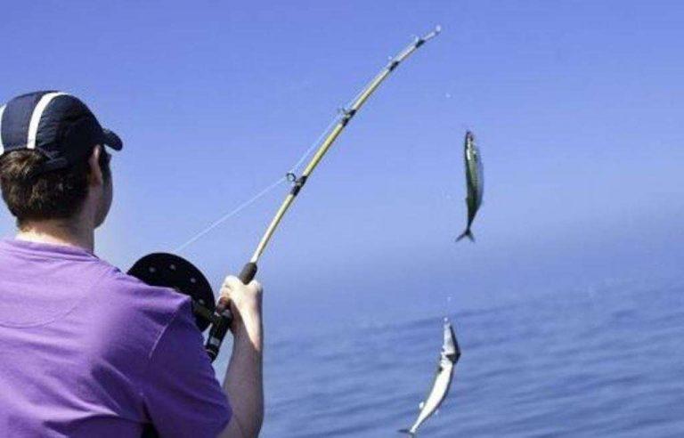 كيف أتعلم صيد السمك… دليلك الكامل للتعرف على كيفية صيد السمك