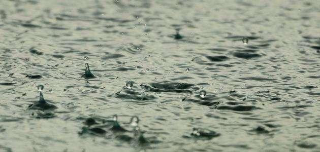 فوائد الأمطار……. تعرف على اهم الفوائد لمياة المطر للبيئة وصحة الإنسان l  بحر المعرفة