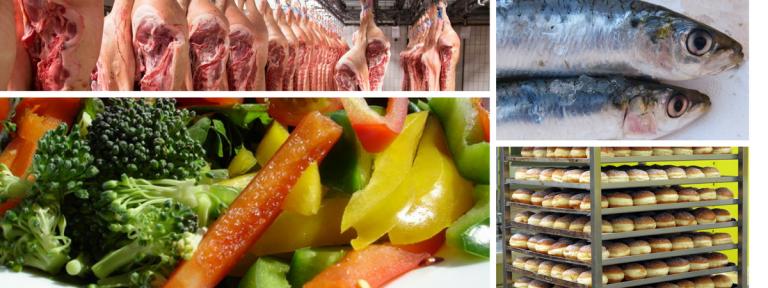 تخصص التغذيةوالتصنيع الغذائي