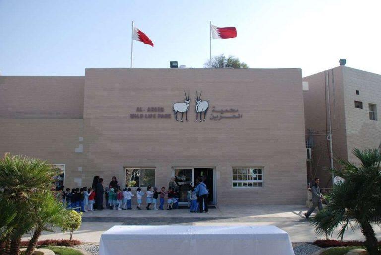 حديقة الحيوان في البحرين
