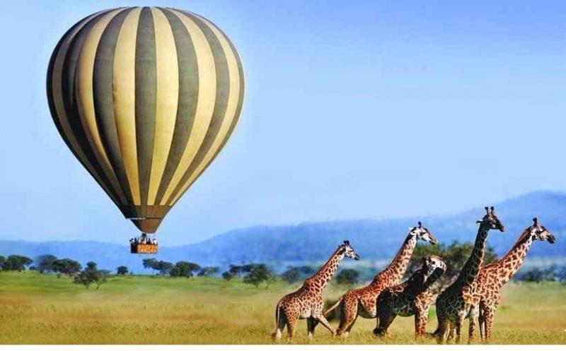 السياحة في كينيا – لعشاق المغامرة ورحلات السفارى