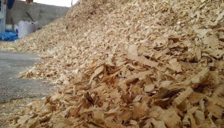 استخدامات نشارة الخشب .. تعرف علي كيفية الإستفادة من نشارة الخشب في المجالات الصناعية والتجميلية