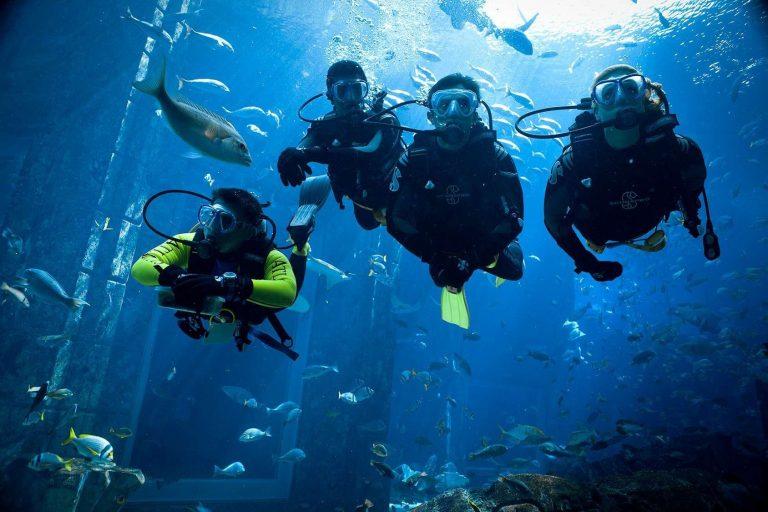 مصطلحات الغوص بالإنجليزي… دليلك الكامل للتعرف على الغوص وأهم مصطلحاته