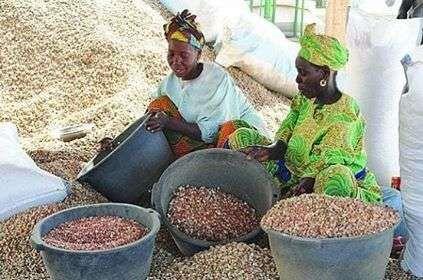 معلومات عن دولة السنغال … عدد سكانها والاديان ومظاهر الاقتصاد بها