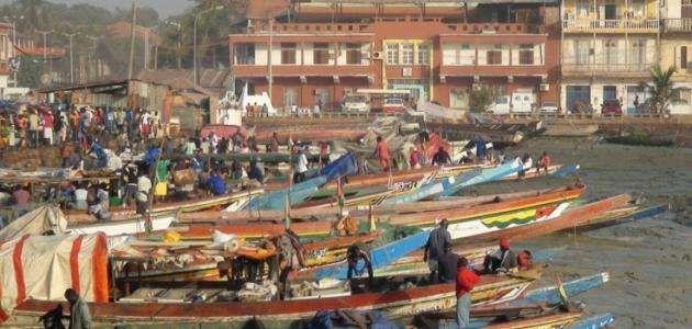 معلومات عن دولة غينيا..وسائل النقل والمواصلات في دولة غينيا