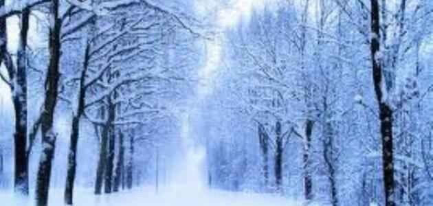 معلومات عن فصل الشتاء .. تعرف معنا على أهم المعلومات الرائعة عن فصل الشتاء