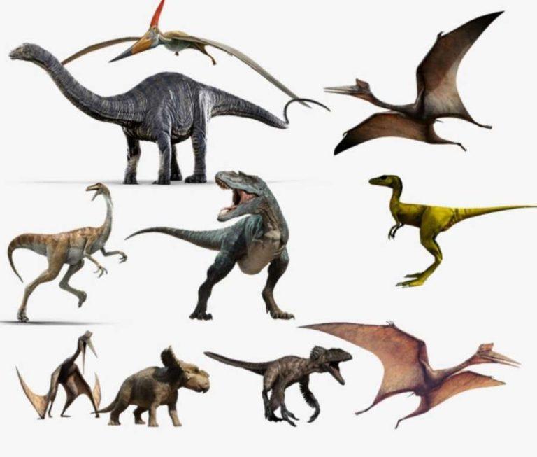 معلومات للأطفال عن الديناصورات… 22 معلومة مبسطة للأطفال عن الديناصورات