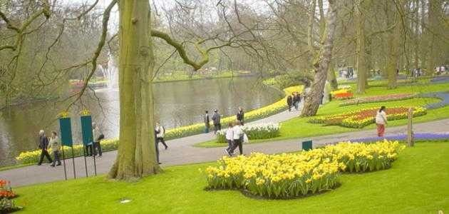 افضل وقت لزيارة هولندا .. تعرف معنا على أفضل الأوقات لزيارة هولندا –