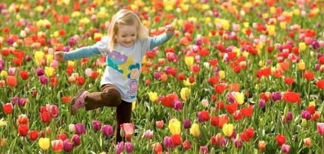 معلومات عن فصل الربيع .. تعرف على أهم المعلومات عن موسم الربيع وسبب حدوثه –