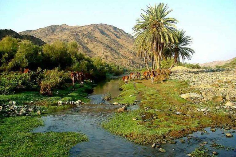 منتزهات القنفذة – مميزات وأماكن منتزهات القنفذة وسبل الترفيه بها حيث جمال الطبيعة
