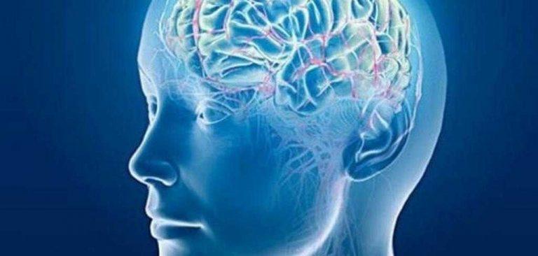 من هو مخترع مقياس الذكاء…تعرف على كل ما يخص مخترع مقياس الذكاء
