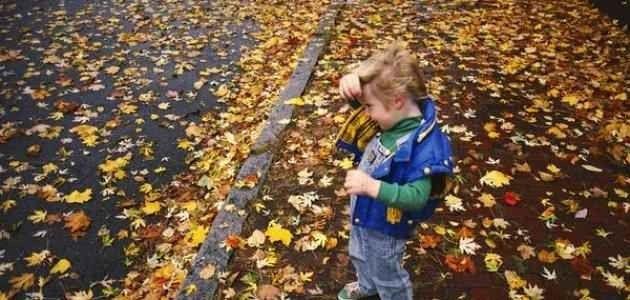 معلومات عن فصل الخريف .. تعرف معنا على أهم وأدق التفاصيل الكاملة حول موسم الخريف