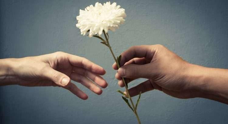 هل تعلم عن العفو … تعرف علي أجمل الحقائق المدهشة عن العفو