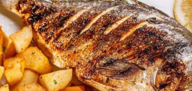 وصفات سمك … اشهر طرق تحضير السمك بوصفات مفيدة ومبتكرة وشهية