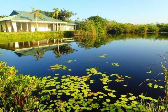 جمال الطبيعة في فلوريدا