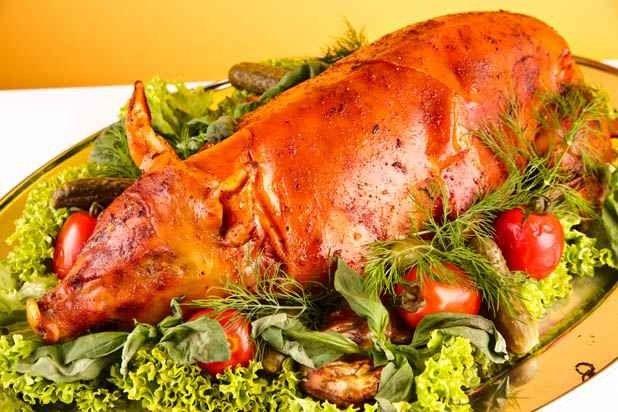 اضرار وفوائد اكل لحم الخنزير لماذا تكثر الأمراض في لحوم الخنازير؟
